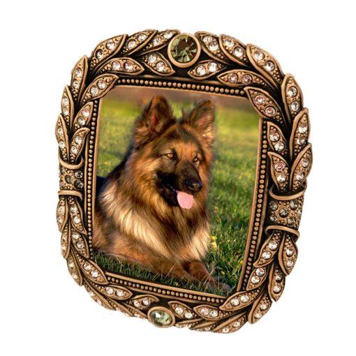 dog-frame